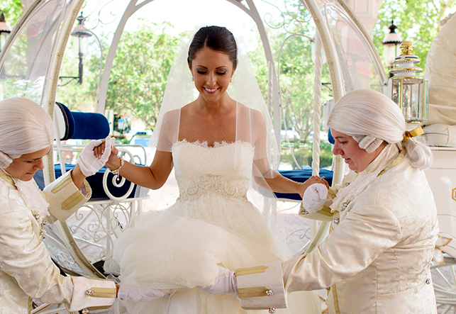 Magical Disney Wedding